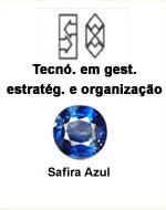 Tecnólogo em Gestão Estratégica e Organização