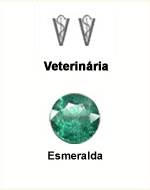 Veterinária