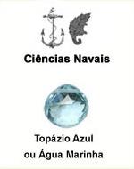 Ciências Navais